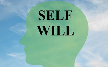 Self-Will Run Riot: How to Let Go Of Control